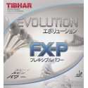 Tibhar - Evolution FX-P